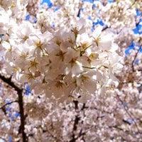 Photo taken at 岩本町ほほえみプラザ by Ryohei F. on 3/31/2014