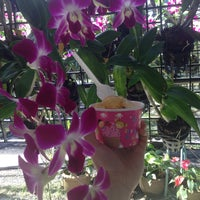 Photo taken at Orchid Farm by Людмилка Е. on 11/17/2016