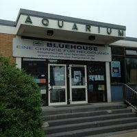 Photo taken at Meerwasser Aquarium Helgoland by Jan K. on 6/20/2013