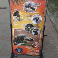 Photo taken at Выставка Живых Рекордов Гинесса by Алена Колесова on 7/24/2014