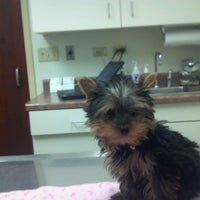 Photo taken at VCA Arboretum View Animal Hospital by Candy K. on 2/4/2013