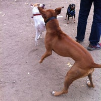 Photo taken at White Rock Lake Dog Park by Colleen D. on 11/18/2012
