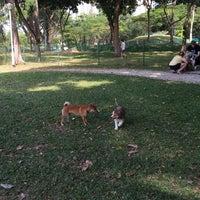 Photo taken at Dog Run @ Bishan Park by Karina P. on 2/22/2015