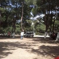 6/8/2013 tarihinde Süleyman Ö.ziyaretçi tarafından Sarnıç'de çekilen fotoğraf