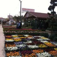 Photo taken at Dm Peyzaj by Yılmaz Y. on 6/6/2013