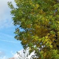 Photo taken at Pardatsch / Predazzo by Elena S. on 10/14/2014
