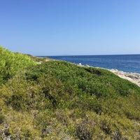 Photo taken at Jerolim Island by Frank C. on 8/9/2016
