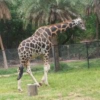 Photo taken at Nehru Zoological Park by Mohaan Nanduri on 6/30/2013