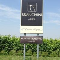 Photo prise au Branchini Azienda Agricola par Roberto R. le6/18/2013