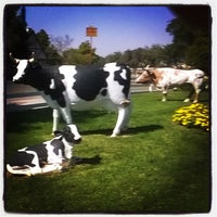 Photo taken at Kingsburg, CA by Malia S. on 9/21/2015