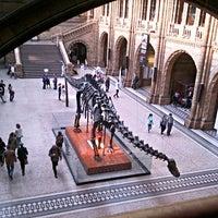 Foto tomada en Museo de Historia Natural por Antipode el 6/27/2013