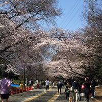 Photo taken at 駒沢公園東口 by Natsuko T. on 4/5/2017