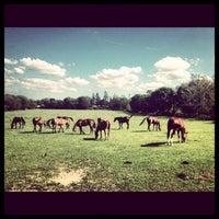 Photo taken at DPF Nassau County 4-H Camp by Nikki D. on 8/1/2013