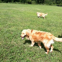 Photo taken at Lyon Oaks Bark Park by Renee K. on 7/24/2013