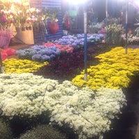 Photo taken at จตุจักร ตลาดต้นไม้ by bo_minum on 11/29/2016