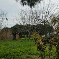 Photo taken at kızıksa by Sezgin ♈. on 3/6/2016