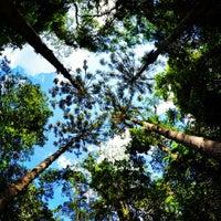 Foto tirada no(a) Parque Estadual da Cantareira - Núcleo Pedra Grande por Marcus D. em 7/14/2013