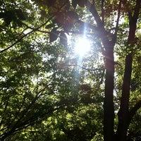 Photo prise au Parc Tenbosch par Cath P. le9/24/2013