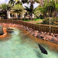 Photo taken at Bahia Resort Hotel - San Diego by Dave H. on 4/25/2013