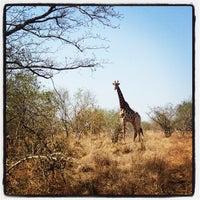 Photo taken at Nhlanguleni Picnic Spot by Claudia G. on 9/28/2013