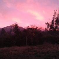 Photo taken at El Estero by Barbarita L. on 7/6/2013