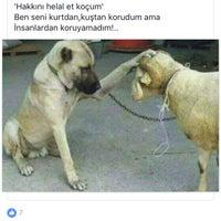 Photo taken at Özcan Kuaför Güzellik Salonu by ihsan ö. on 9/11/2016