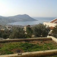 Photo taken at limon ağaçları bahçe by Mustafa on 2/23/2014