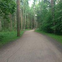 Photo taken at Кленовая Аллея В Сосновке by Екатерина💋 Ж. on 5/31/2014