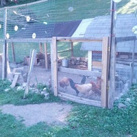 Photo taken at The Chicken Coop by Jennifer F. on 8/25/2013