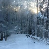 Foto tomada en Parque Nacional Tierra del Fuego por Vero R. #. el 7/20/2013