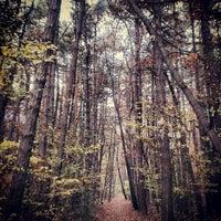 Photo taken at Борисова градина by Iordan B. on 11/21/2012