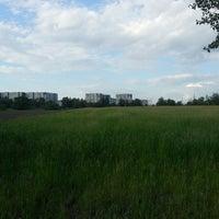 Photo taken at опытное поле by Вячеслав Г. on 6/22/2013