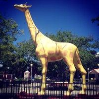 Photo taken at Nut Tree Train & Carousel Ride by Shane M. on 6/26/2013
