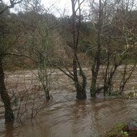 Photo taken at Killarney/Woodlawn Riverside by 💃Belladonna O. on 1/24/2014