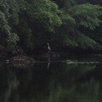 Photo taken at Killarney/Woodlawn Riverside by 💃Belladonna O. on 7/3/2013