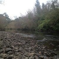 Photo taken at Killarney/Woodlawn Riverside by 💃Belladonna O. on 3/4/2013