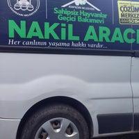 Photo taken at Adapazarı Belediyesi Sahipsiz Hayvanlar Geçici Bakımevi by Ali B. on 7/9/2015