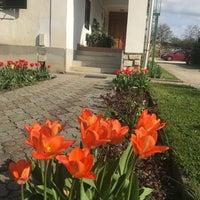 Photo taken at Bánó Porta by Joci D. on 4/14/2018