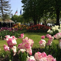Photo taken at The Floral Fair by Kris M. on 4/29/2017