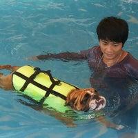 Foto tomada en Sa-by-jai Dog Swimming Pool por .Anat J. el 5/11/2014