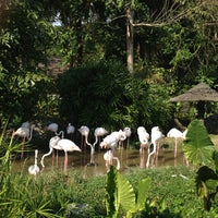 Photo taken at Khao Kheow Open Zoo by kugolf2004 on 12/29/2012