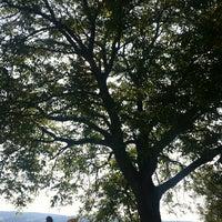 Photo taken at Nussbaum am Greifensee by Louise C. on 7/21/2013