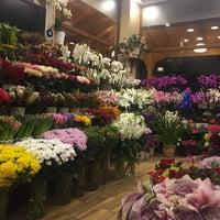 2/9/2016 tarihinde Mustafa T.ziyaretçi tarafından Violet Garden Çiçekliği'de çekilen fotoğraf