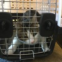 Photo taken at Pet Samaritan Clinic by aaronpk on 9/2/2017