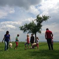 Photo taken at Oidner, Reiser. Kindergarten by Martina E. on 6/29/2013