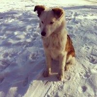 Photo taken at Северо-Задонск by Elena L. on 1/25/2014
