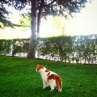 Photo taken at Secret Garden by Hanzade S. on 8/18/2014