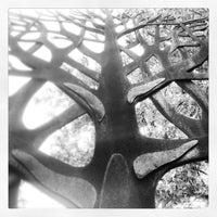 Photo prise au Queens Botanical Garden par Sergio F. le7/13/2013
