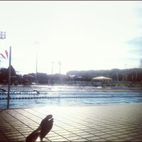 Photo taken at Stadio Del Nuoto by Vale Riccione C. on 1/25/2013