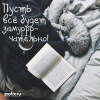 Photo taken at ЗООФИКС / ZOOFIX.RU - интернет-зоомагазин by ZOOFIX on 1/28/2017